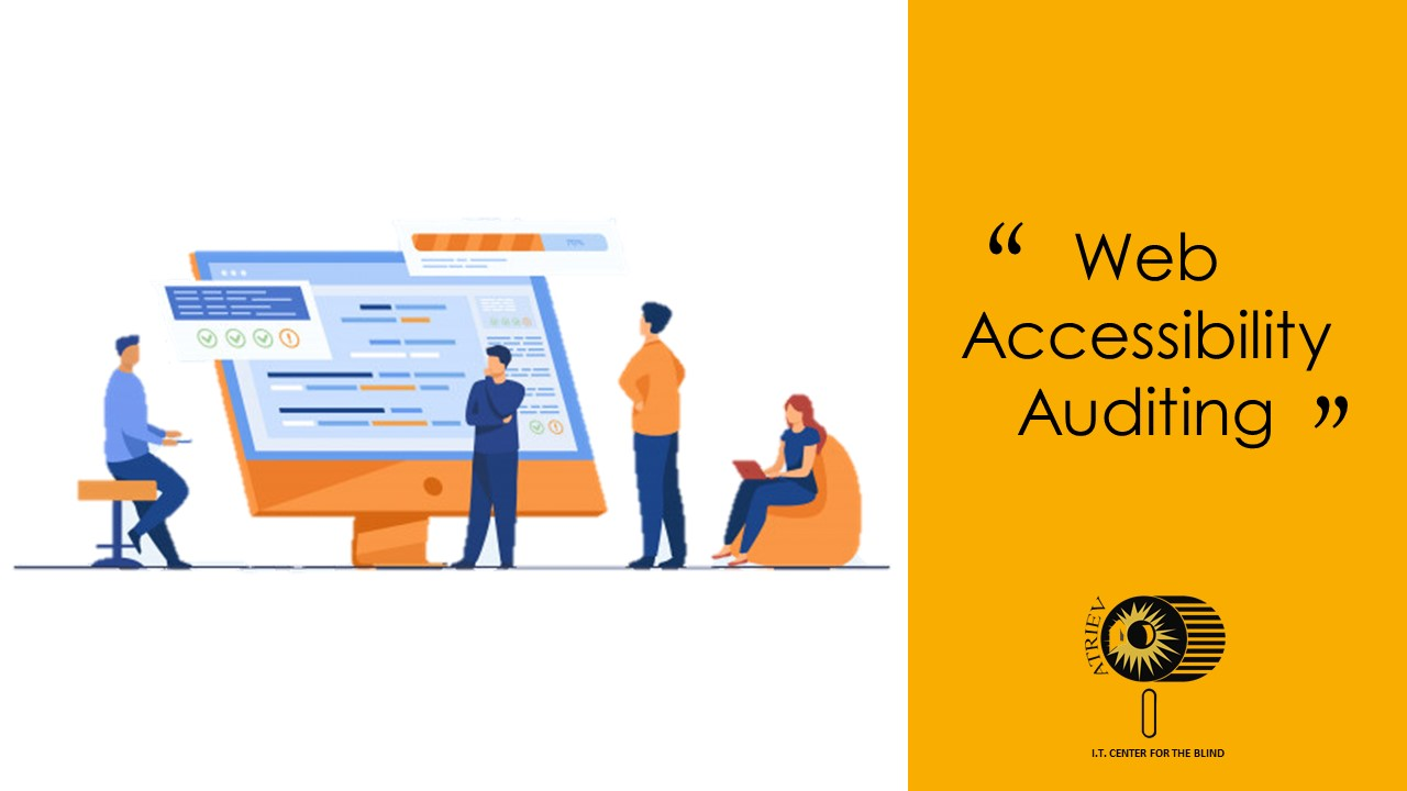 Web Accessibility Auditing